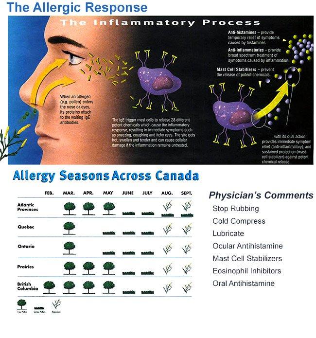 Allergic Response Toronto Eye Clinic