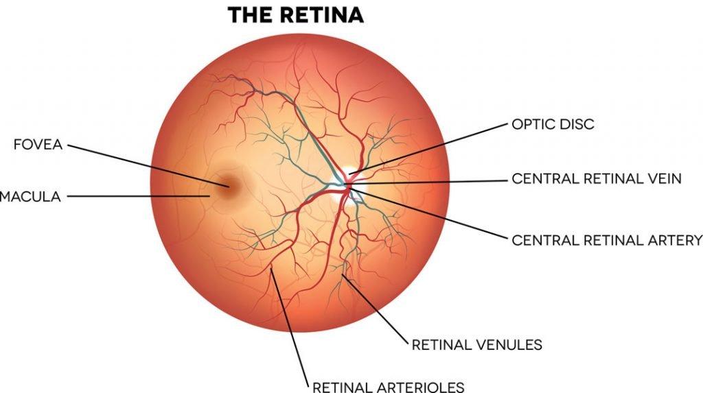 retina toronto eye clinic